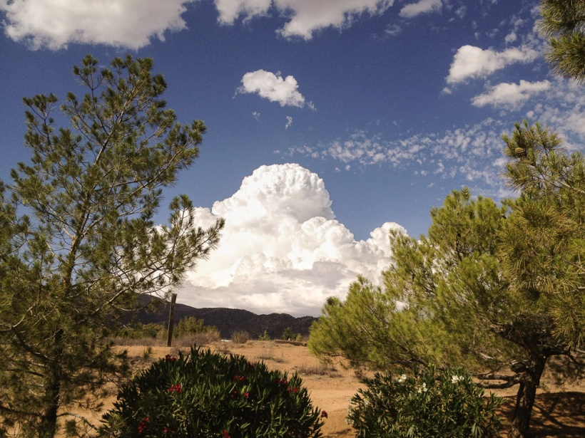 IMG_0996 thunderhead