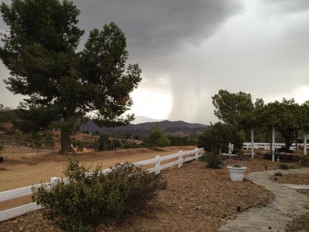 IMG_1044 rain