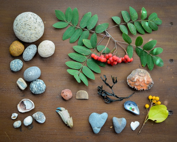 DSC_6961 beach treasures_above